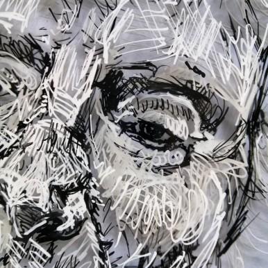 Detail of drawing of Bird Whisperer